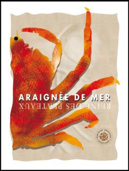 L'araignée de mer ou Maja squinado est une spécialité bretonne. retrouvez là en affiche sur le site étoile de sel