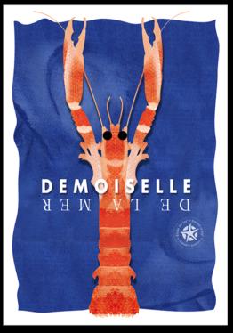 carte postale de la langoustine de bretagne