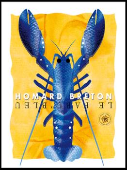 Homarus gammarus ou homard breton A découvrir avec un visuel moderne et desgin